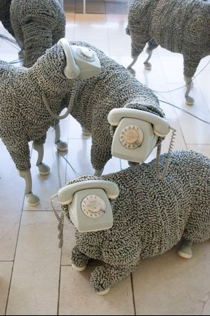 Phonesheep